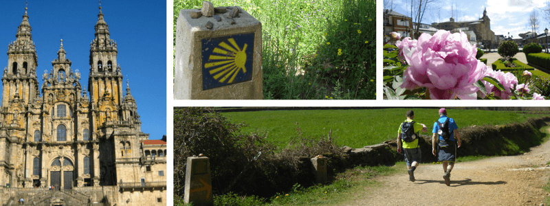 c776f7428bcc Camino; El Camino; Camino de Santiago; The Way of St James