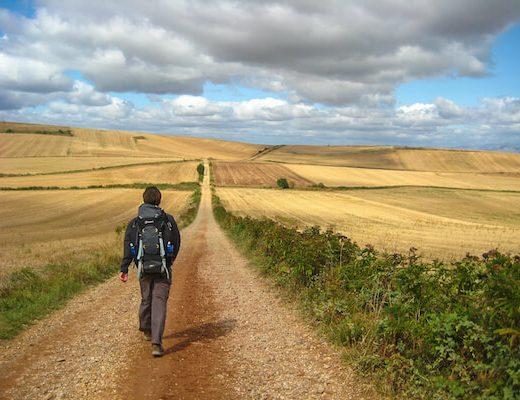 Walking through farmland Camino Frances section 3