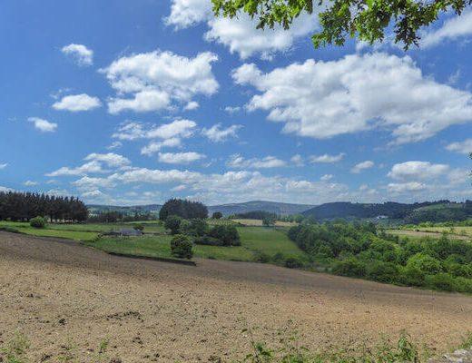 Camino Frances 8-8 - Scenery