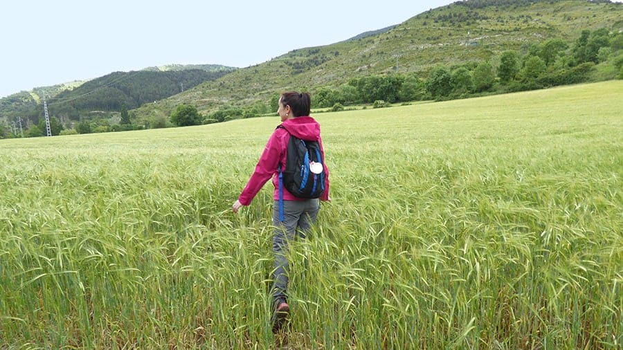 How Walking the Camino Changed Me For the Better image