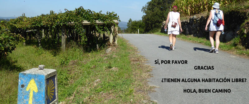 Learn Basic Spanish before the Camino image