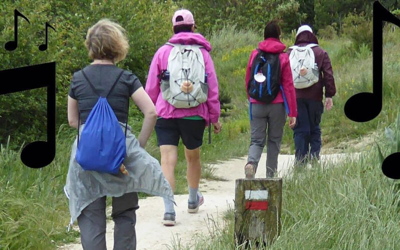 Recommended songs for walking the Camino de Santiago a7a9c39627a23