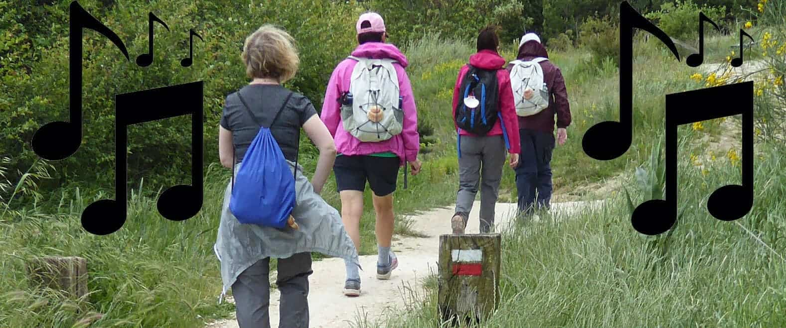 Recommended songs for walking the Camino de Santiago image