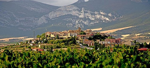 Vitoria and Rioja Full Day Tour main image