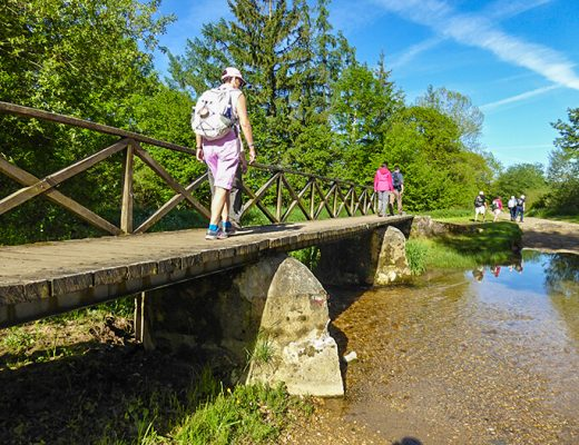 Bridge on Camino Frances section 1