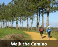 Walk the Camino