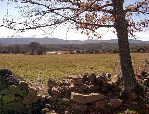 Scenery Camino Frances 6
