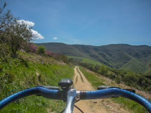 View while Cycling the Camino de Santiago