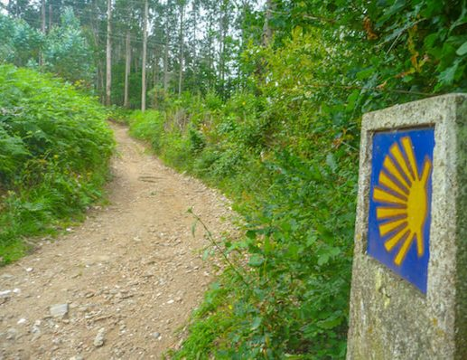 Markers on Camino Ingles