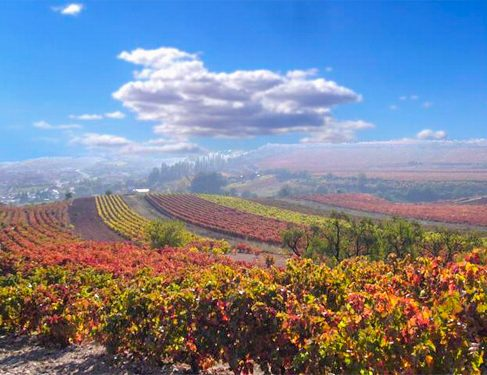 scenery on Camino Mozarabe 3
