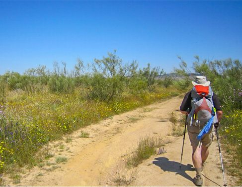 Pilgim on Camino Mozarabe 6