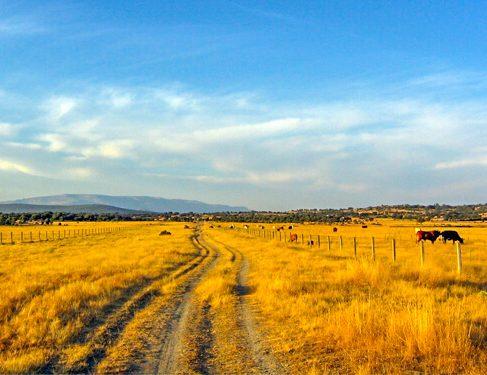 Camino Mozarabe 6