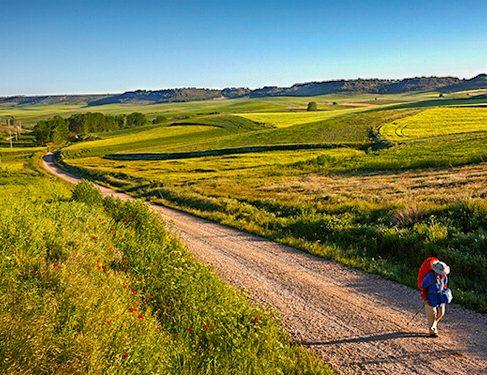 Scenery and track on Camino Mozarabe 7
