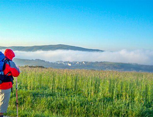 Scenery on Camino Mozarabe 8