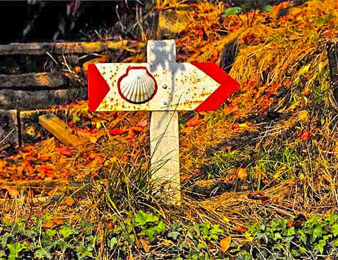 Signage on Camino Mozarabe 8