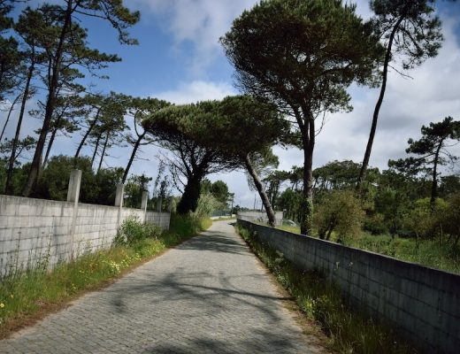 Camino Portugues Coastal  Route 1 - walkway along the coast of Portugal