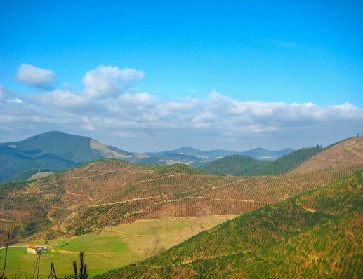 scenery Camino del Norte 1