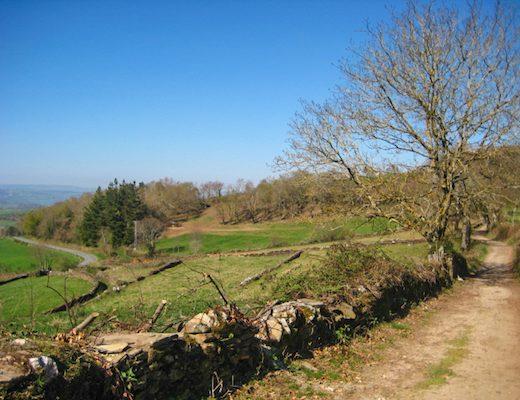 Cycle Camino Frances 3