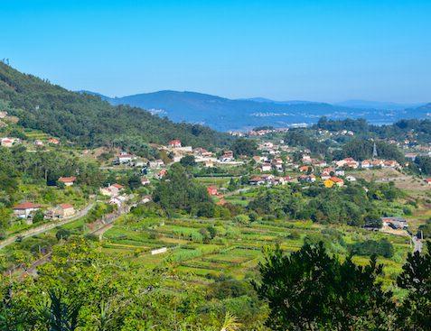 scenery Horse Ride Camino Portugues