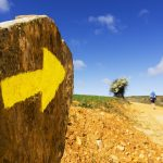 The Main Camino Ways in Spain image