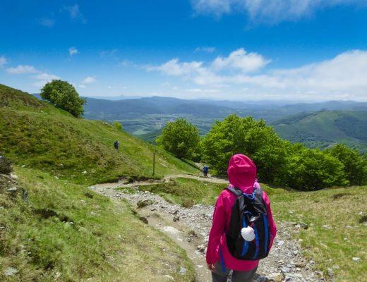 The Whole Camino Frances - pilgrim walking through the pyrenees