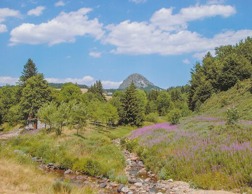 Via Podiensis 1 - scenery