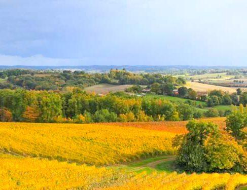 Via Podiensis 5 - farmland scenery