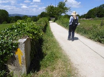 Walking the Camino alone