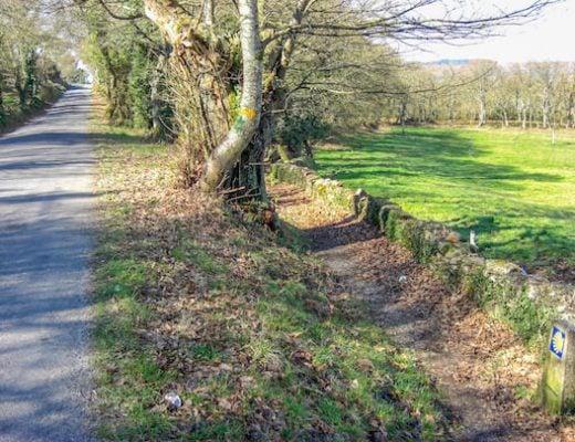 Whole Camino Primitivo