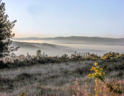 Whole Camino Primitivo  - scenery with light fog