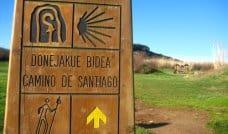 The Whole Camino del Norte