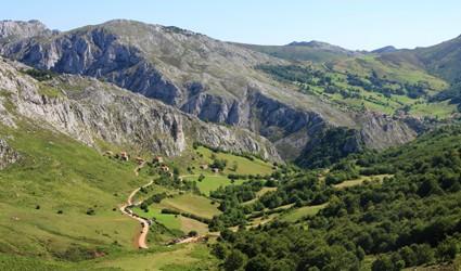 Camino Primitivo main image