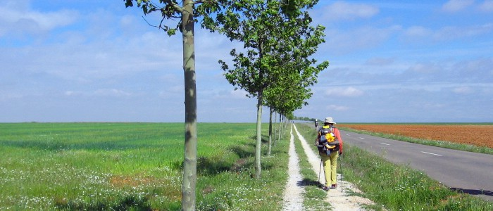 Walking to the camino to reduce stress