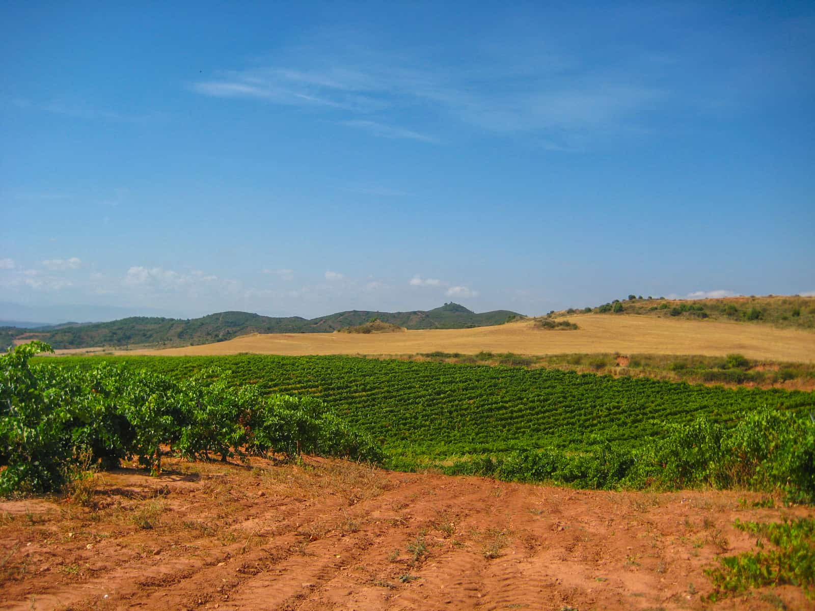 Camino Frances Pamplona to Logrono