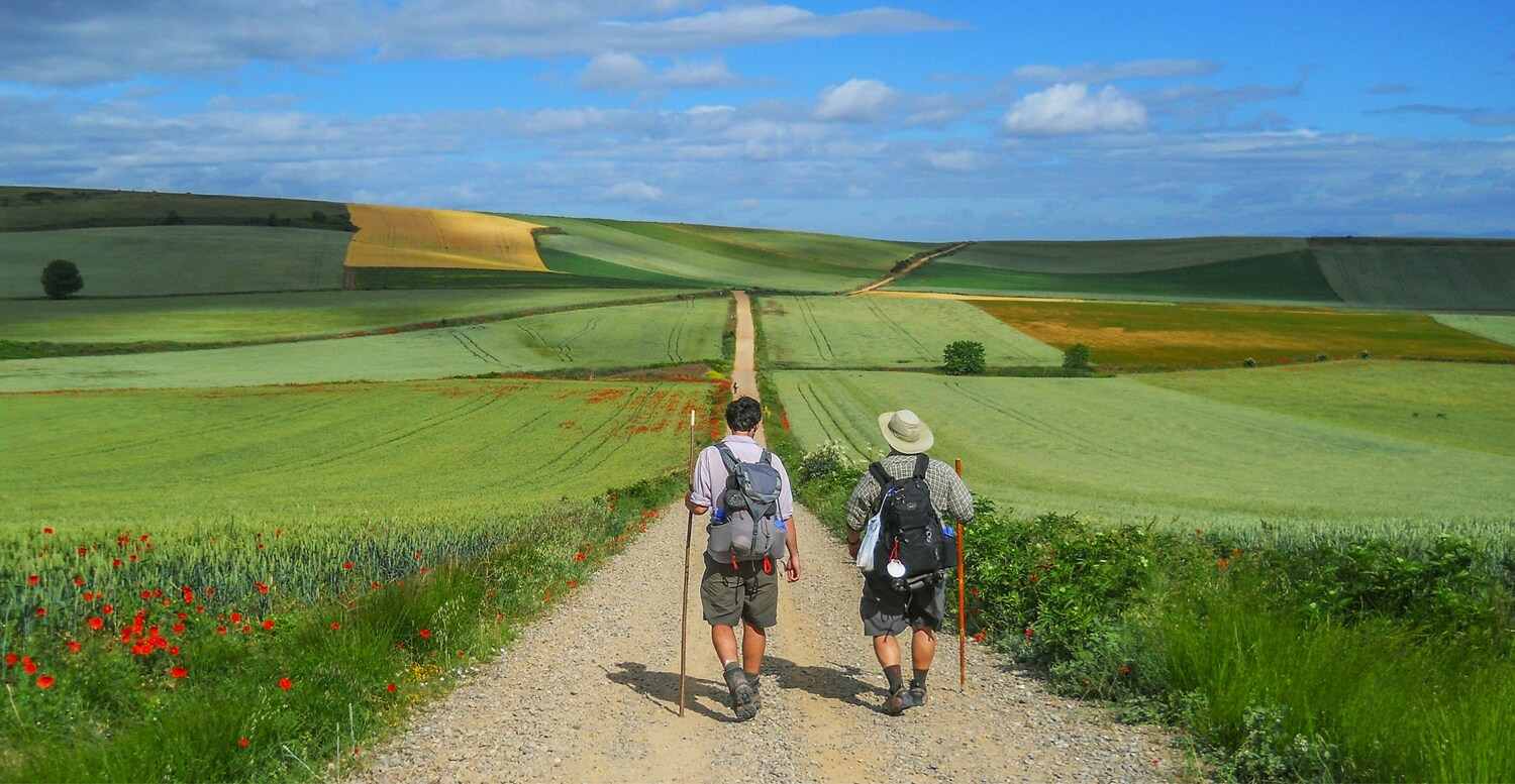 Camino 2020 - two pilgrims walking into the landscape