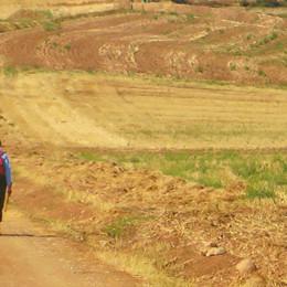 pilgrims on the camino frances