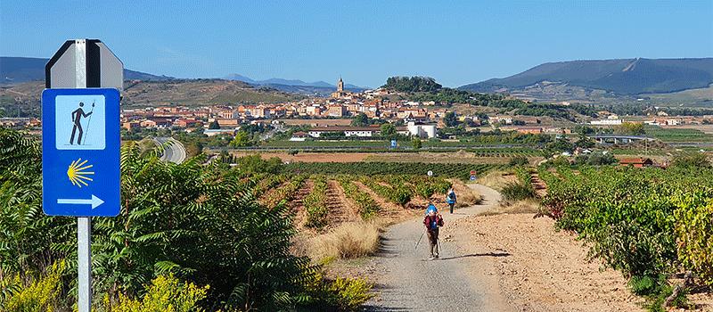 Camino experience tours