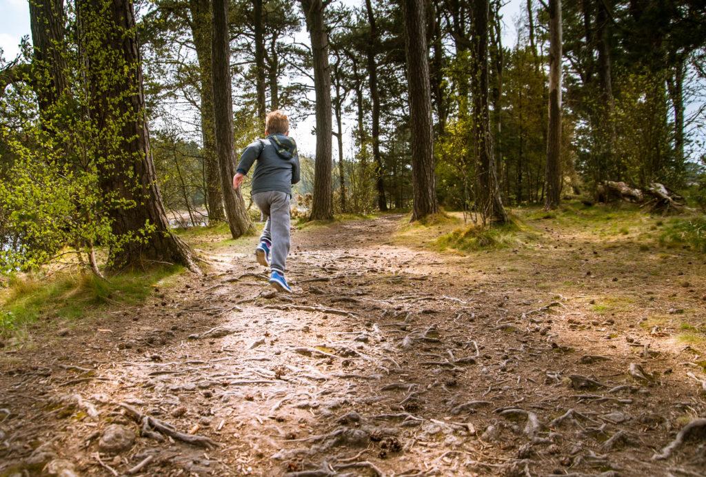 Boy Hiking Through Woods