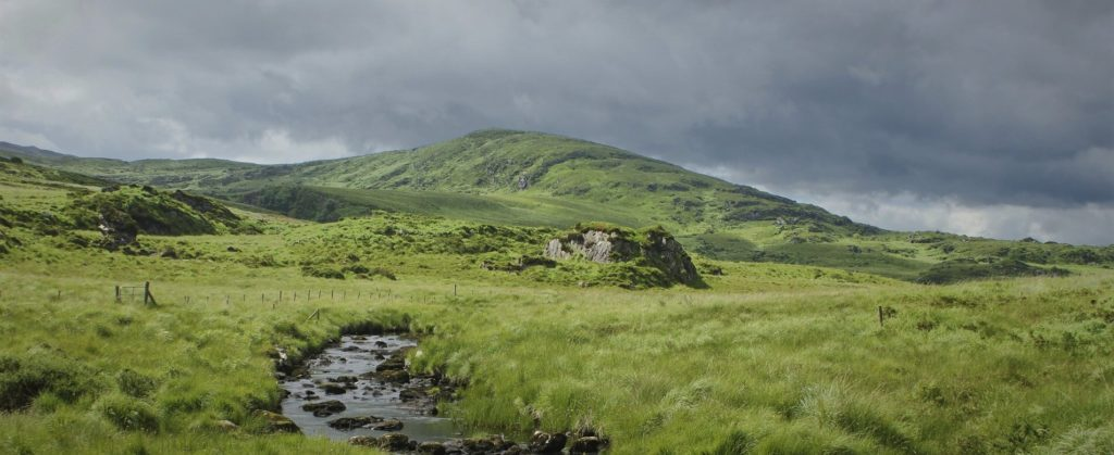 carbon offsetting in ireland