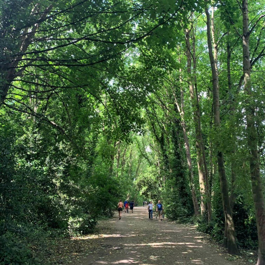 the virtual camino path through london