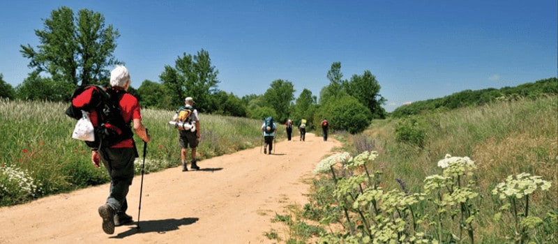 kevin kelly on the camino