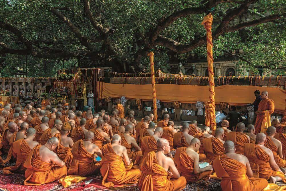 ©Hans-Joachim Aubert/Alamy Stock Photo Monks praying in front of the Bodhi Tree where the Buddha experienced enlightenment, Bodh Gaya, India