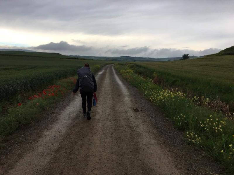 solo young woman walking the camino