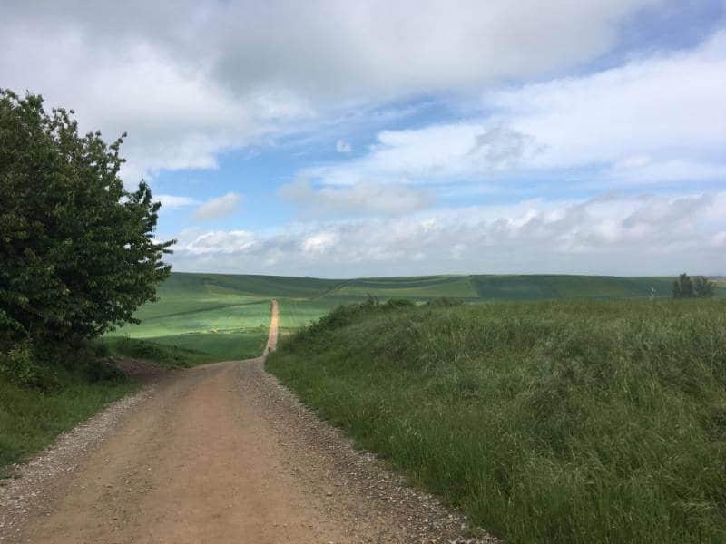 the camino de santiago path way of saint james